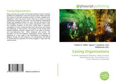 Bookcover of Caving Organizations