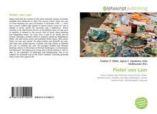 Pieter van Laer的封面