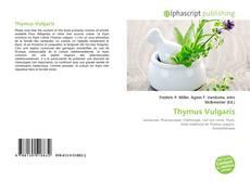 Thymus Vulgaris的封面