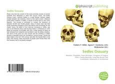 Bookcover of Sedlec Ossuary