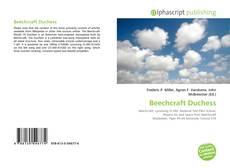 Borítókép a  Beechcraft Duchess - hoz