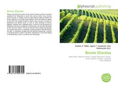 Bruno Giacosa kitap kapağı