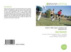 Portada del libro de Joe Garner