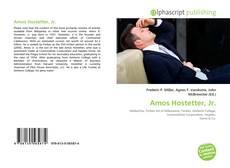 Bookcover of Amos Hostetter, Jr.
