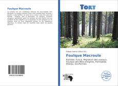 Buchcover von Foulque Macroule