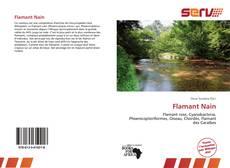 Buchcover von Flamant Nain
