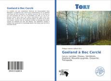 Goéland à Bec Cerclé kitap kapağı