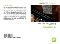 Bookcover of Gaetano Reina