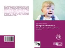 Copertina di Imaginary Audience