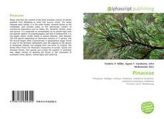 Pinaceae kitap kapağı
