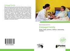 Capa do livro de Conjugal Family