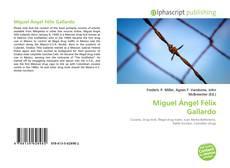 Miguel Ángel Félix Gallardo的封面