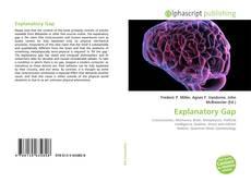 Bookcover of Explanatory Gap