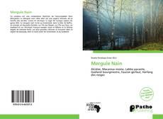 Buchcover von Mergule Nain