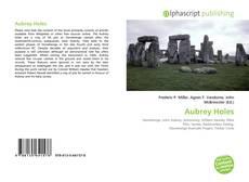 Aubrey Holes kitap kapağı
