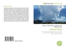Bookcover of Fissure Vent