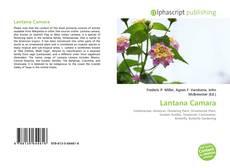 Обложка Lantana Camara