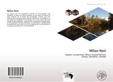 Обложка Milan Noir