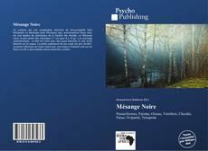 Mésange Noire kitap kapağı