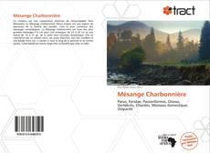 Mésange Charbonnière kitap kapağı