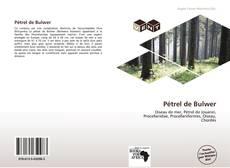 Обложка Pétrel de Bulwer