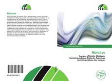 Moldave的封面