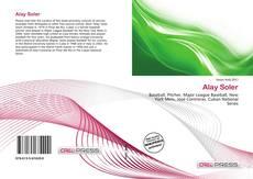 Alay Soler kitap kapağı