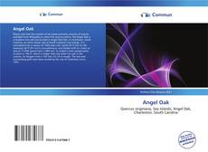 Bookcover of Angel Oak