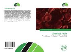 Обложка Amniotic Fluid