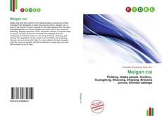 Bookcover of Meigan cai
