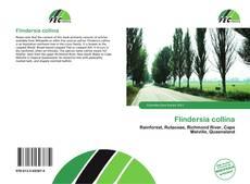 Обложка Flindersia collina