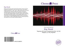 Bookcover of Big Hawk