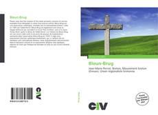 Обложка Bleun-Brug