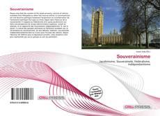 Souverainisme kitap kapağı