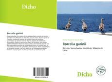 Buchcover von Borrelia garinii