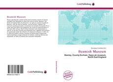 Bookcover of Beamish Museum