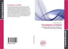 Buchcover von Eucalyptus coolabah