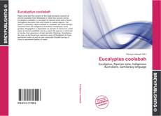 Обложка Eucalyptus coolabah
