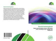 Обложка David Immerglück