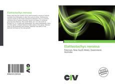 Bookcover of Elattostachys nervosa