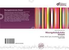 Capa do livro de Maungakotukutuku Stream