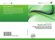 Bookcover of Bijeljina Massacre