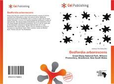 Bookcover of Bedfordia arborescens