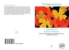 Обложка Acacia coriacea