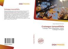 Bookcover of Crataegus tanacetifolia