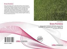 Enes Fermino kitap kapağı