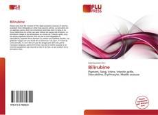 Bookcover of Bilirubine