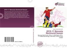 Bookcover of 2010–11 Borussia Dortmund Season