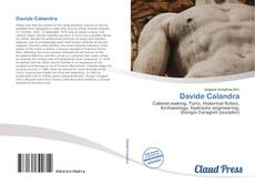 Bookcover of Davide Calandra