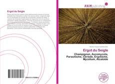 Bookcover of Ergot du Seigle
